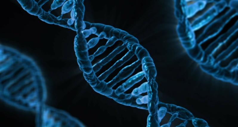 genes double helix microscopy