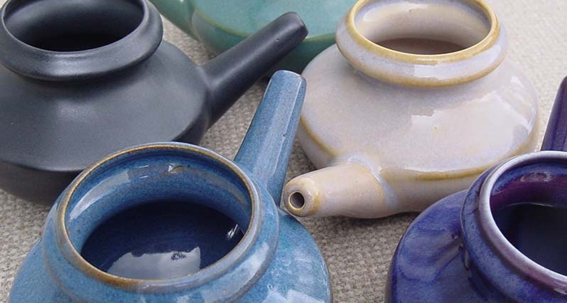 Debra's Natural Gourmet Your Amazing Neti Pot (And What To