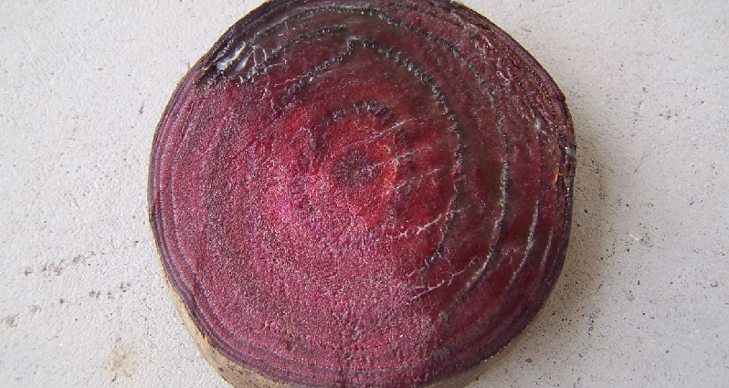 a slice of beet