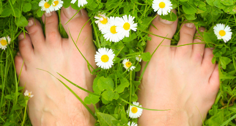 bare feet in the grass amidst flowers