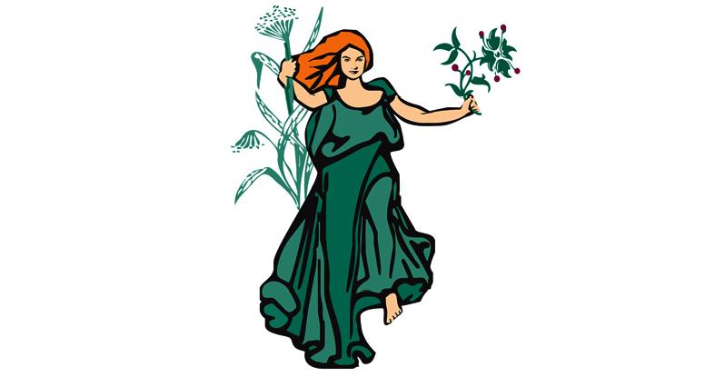 The Vitanica logo