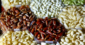 a variety of rice